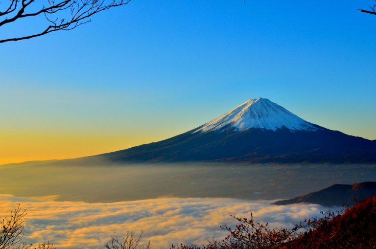 OPTI-日本工作假期