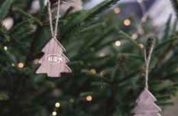 OPTI-轉機-聖誕市況分析
