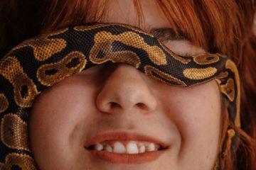OPTI-蛇年-2020-大旺